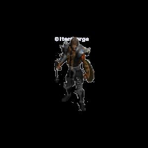 Diablo 2 Dru Elemental look (gear)