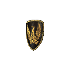 Diablo 2 Stormshield look (icon)