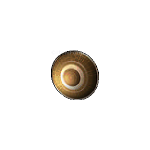 Diablo 2 Dream Vortex Shield look (icon)